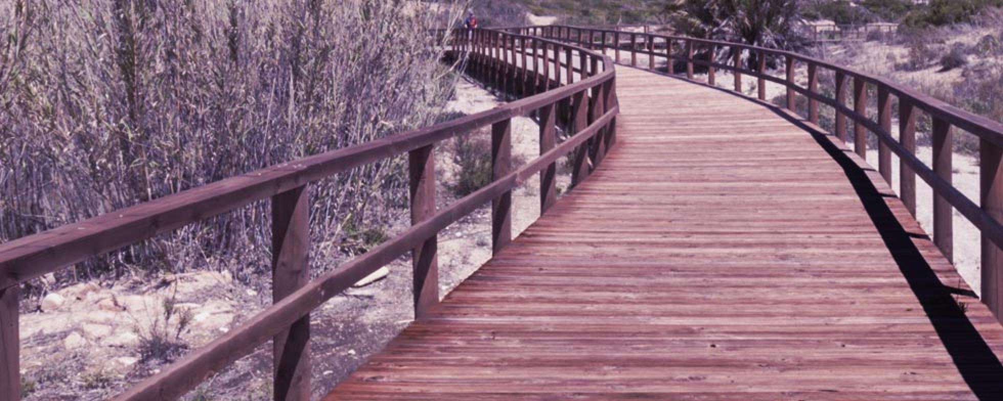 Picture of a bridge over wetlands